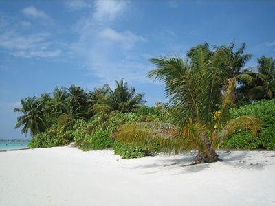 treasure-island-photo